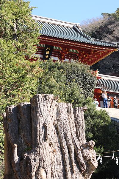 【ぶらりパン旅】鎌倉パン旅の初回ツアー開催日でした。